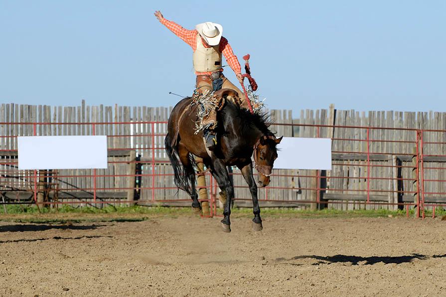 Rodeo: Tierquälerei beim Rodeo, Bullenreiten & Co.