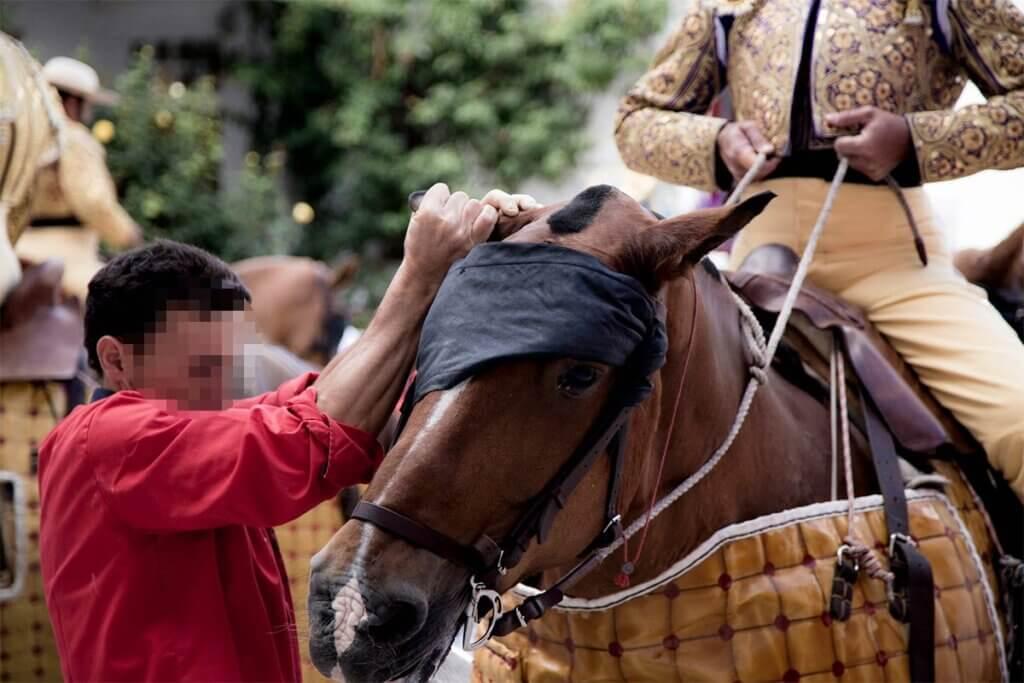 Matador sitzt auf einem Pferd, dessen Augen verbunden sind