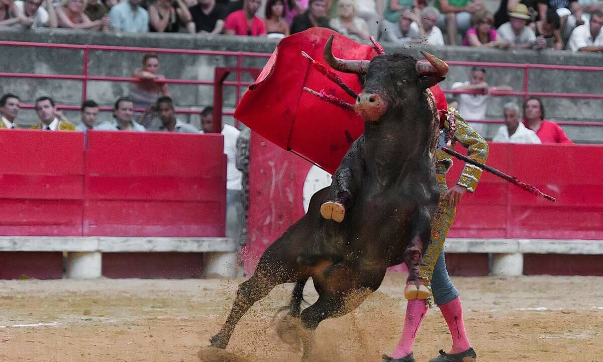 Matador kaempft mit Stier