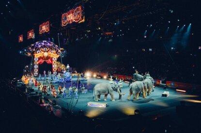 Zirkus mit Tieren