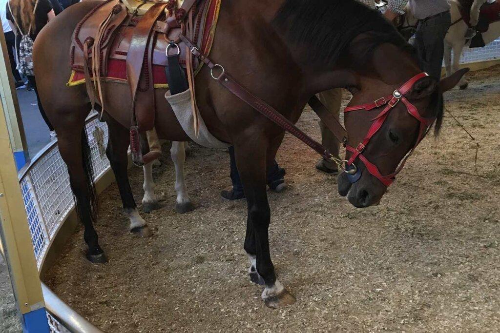 Pferd vom Ponykarussel