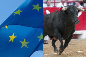 Collage EU-Flagge und Stier