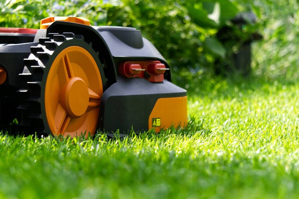 Maehroboter auf dem Rasen