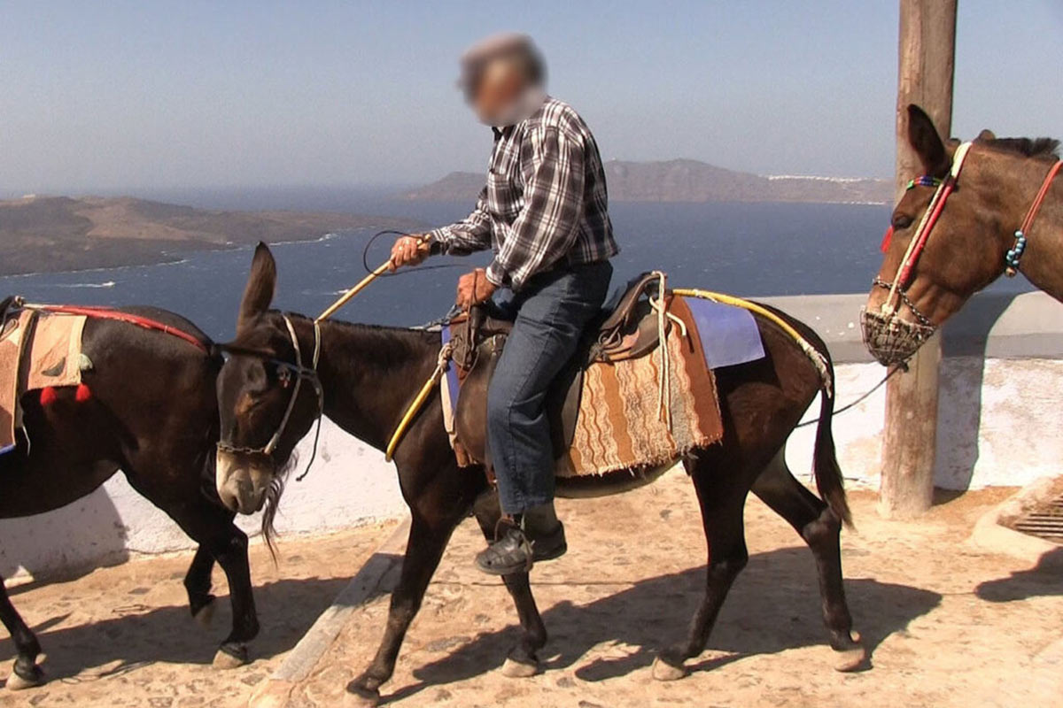 mann reitet auf einem esel