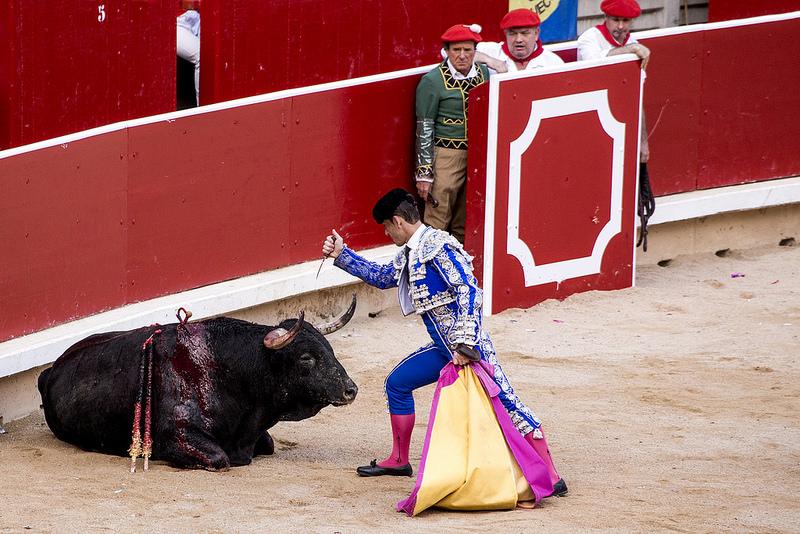 Stierkampf in Spanien – Eine Tradition mit tausenden Todesopfern