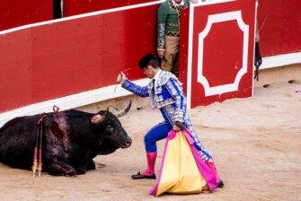 Stierkampf in Spanien stoppen