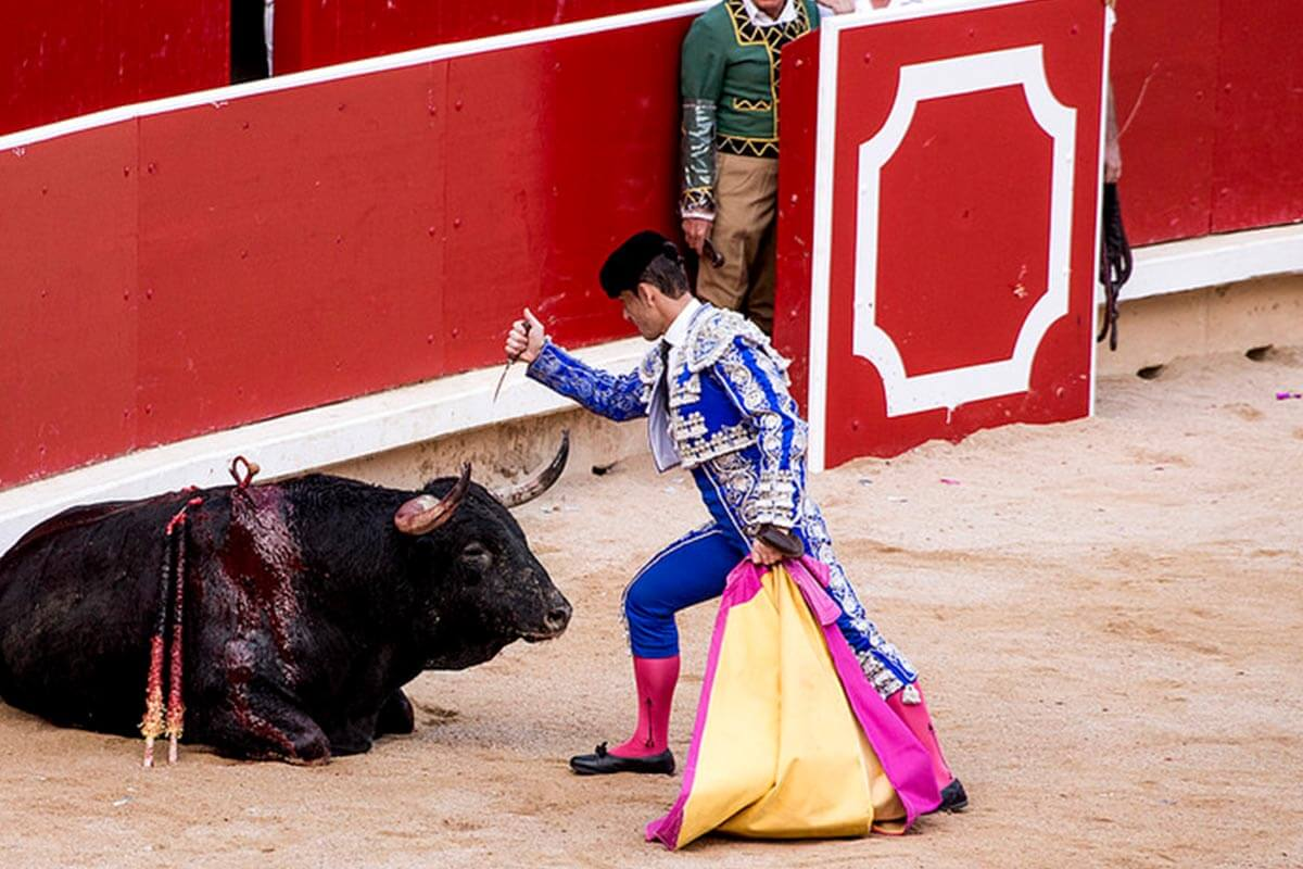 Matador ersticht Stier in Arena