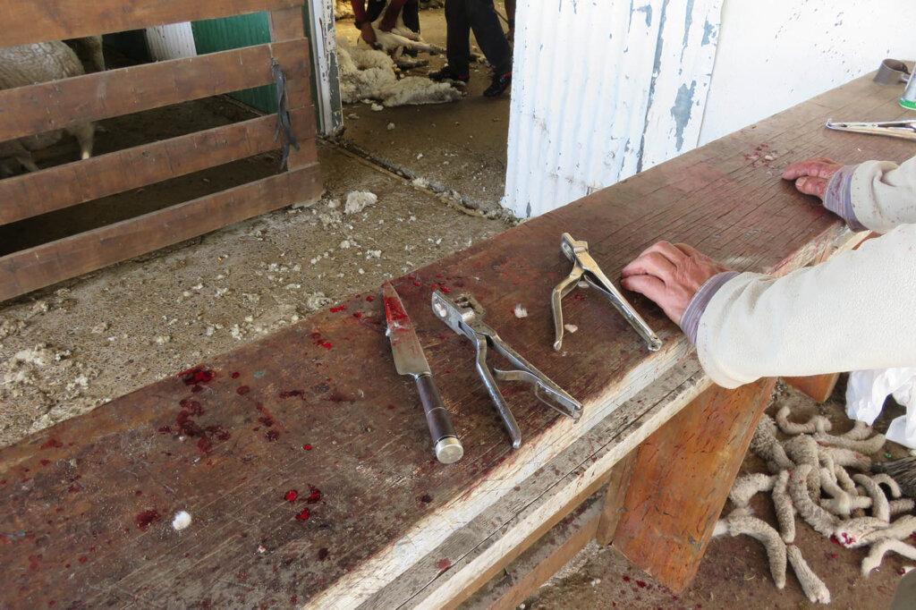 Verschiedene Werkzeuge, die in der Wollindustrie zum Einsatz kommen