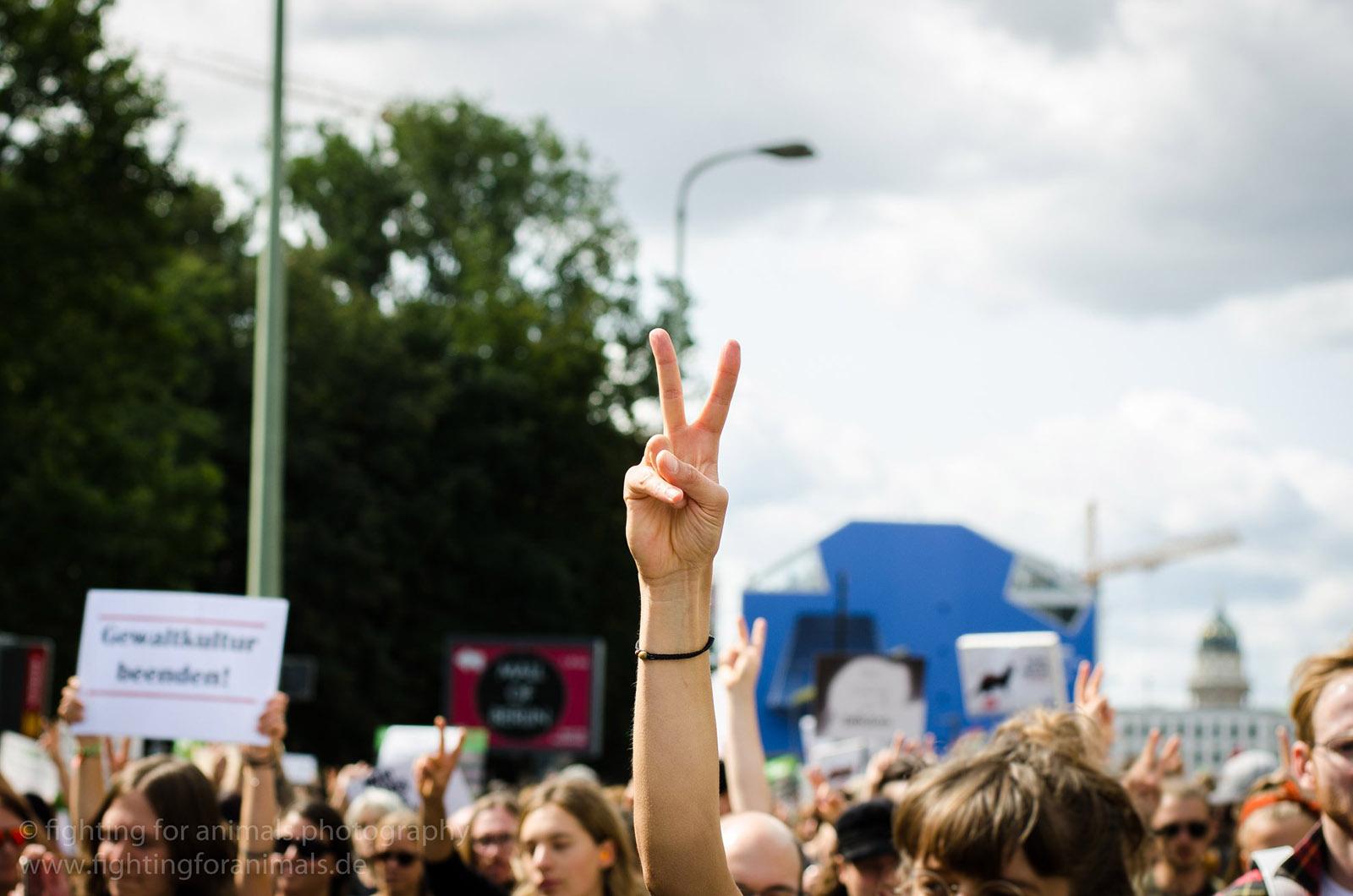 Warum auch Sie diesen Freitag für die Klimarettung streiken sollten