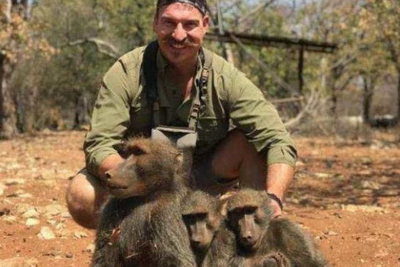 Amerikanischer Politiker tötet Pavianfamilie auf Trophäenjagd