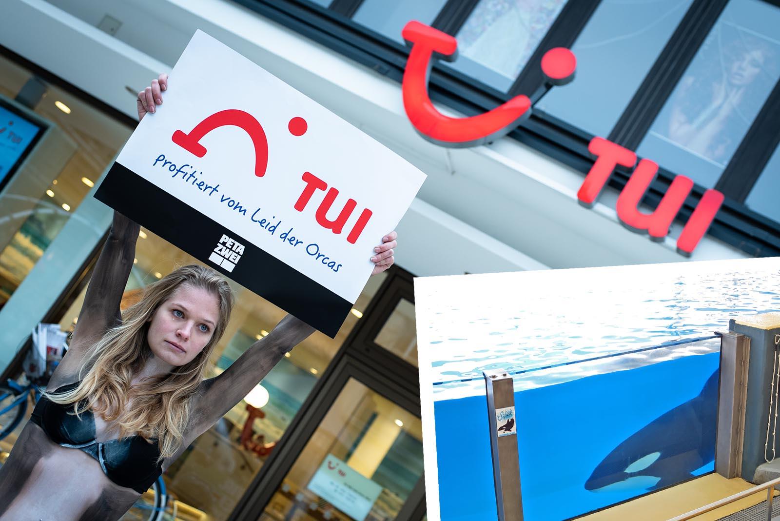 Für die Wale auf die Straße: 14 Demonstrationen vor TUI-Filialen in ganz Deutschland