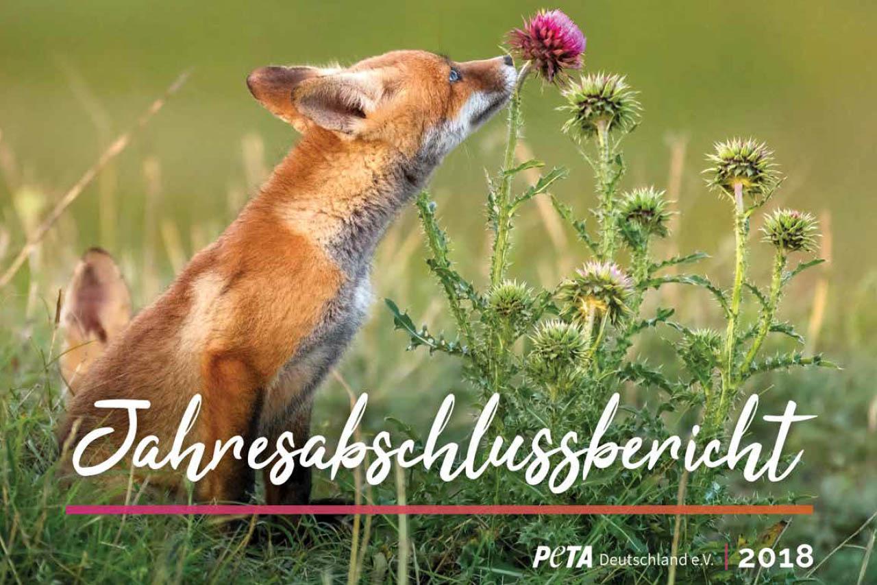 PETAs Jahresbericht 2018 – Das haben wir gemeinsam erreicht