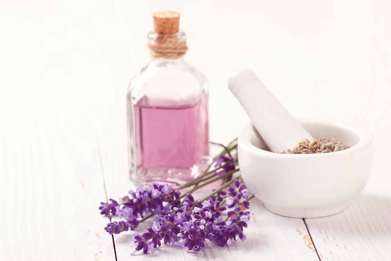 Diese 5 Parfums Sind Vegan Und Tierversuchsfrei