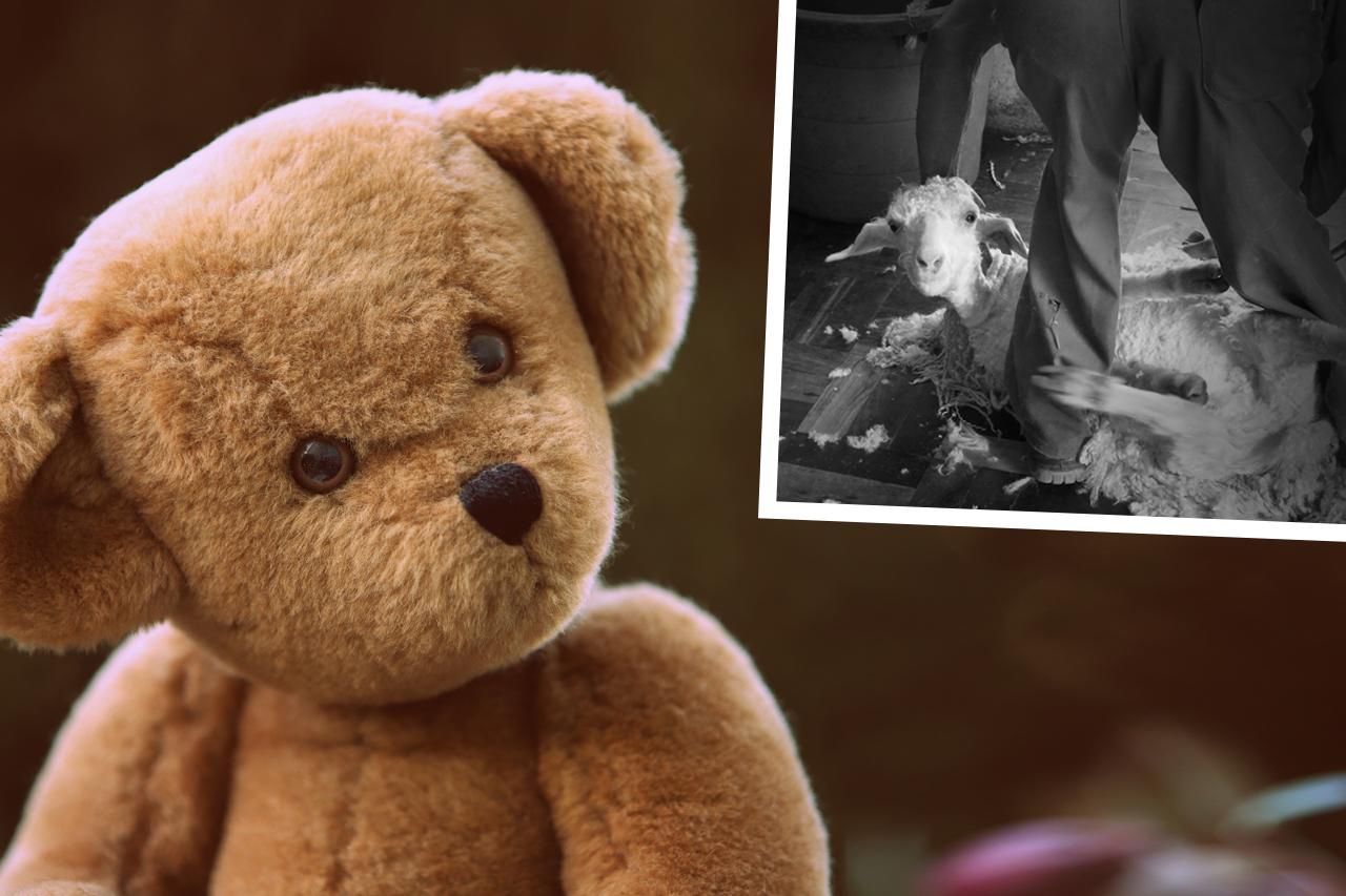 ERFOLG: Keine Mohair-Teddys mehr in royalen Souvenirläden