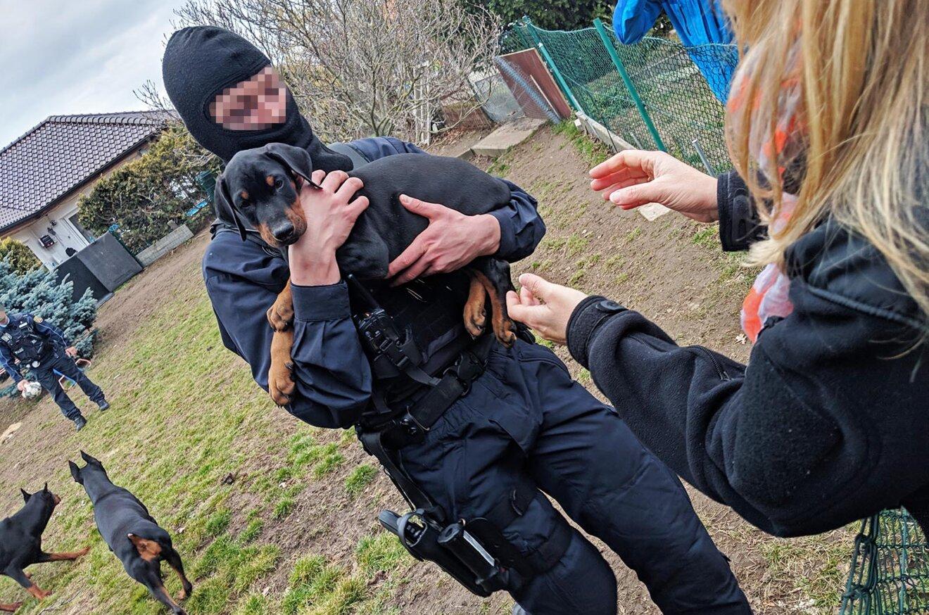 Polizist mit Welpe auf dem Arm