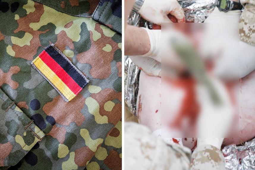 Schweine in OP-Kursen der Bundeswehr verstümmelt – jetzt helfen!