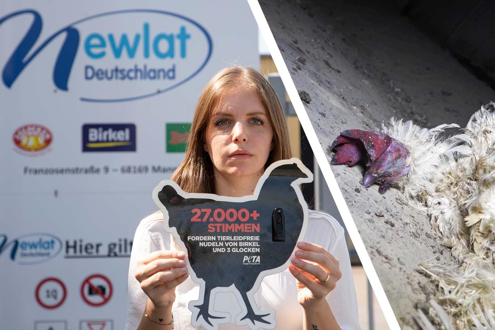 Über 27.000 Stimmen für die Tiere! Doch Birkel verweigert die Annahme!