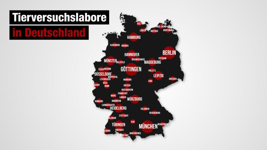 Grafik Tierversuchslabore in Deutschland
