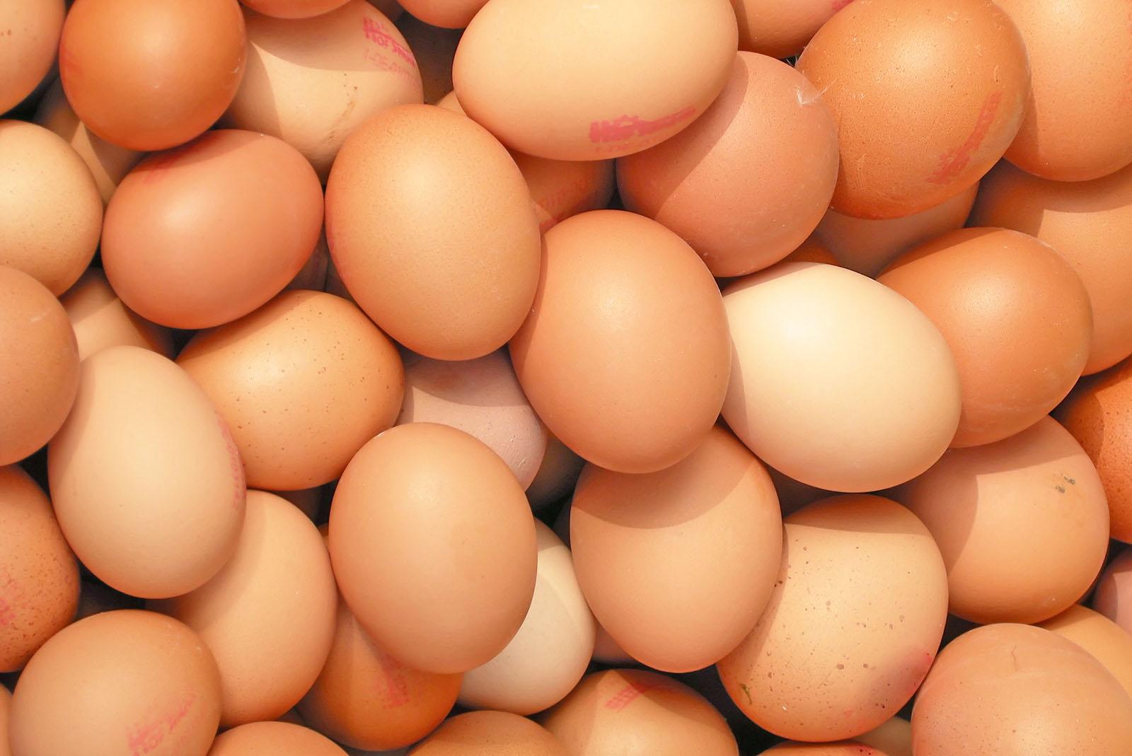 Fipronil in Eiern: Ein Jahr nach dem Skandal – was hat sich getan?