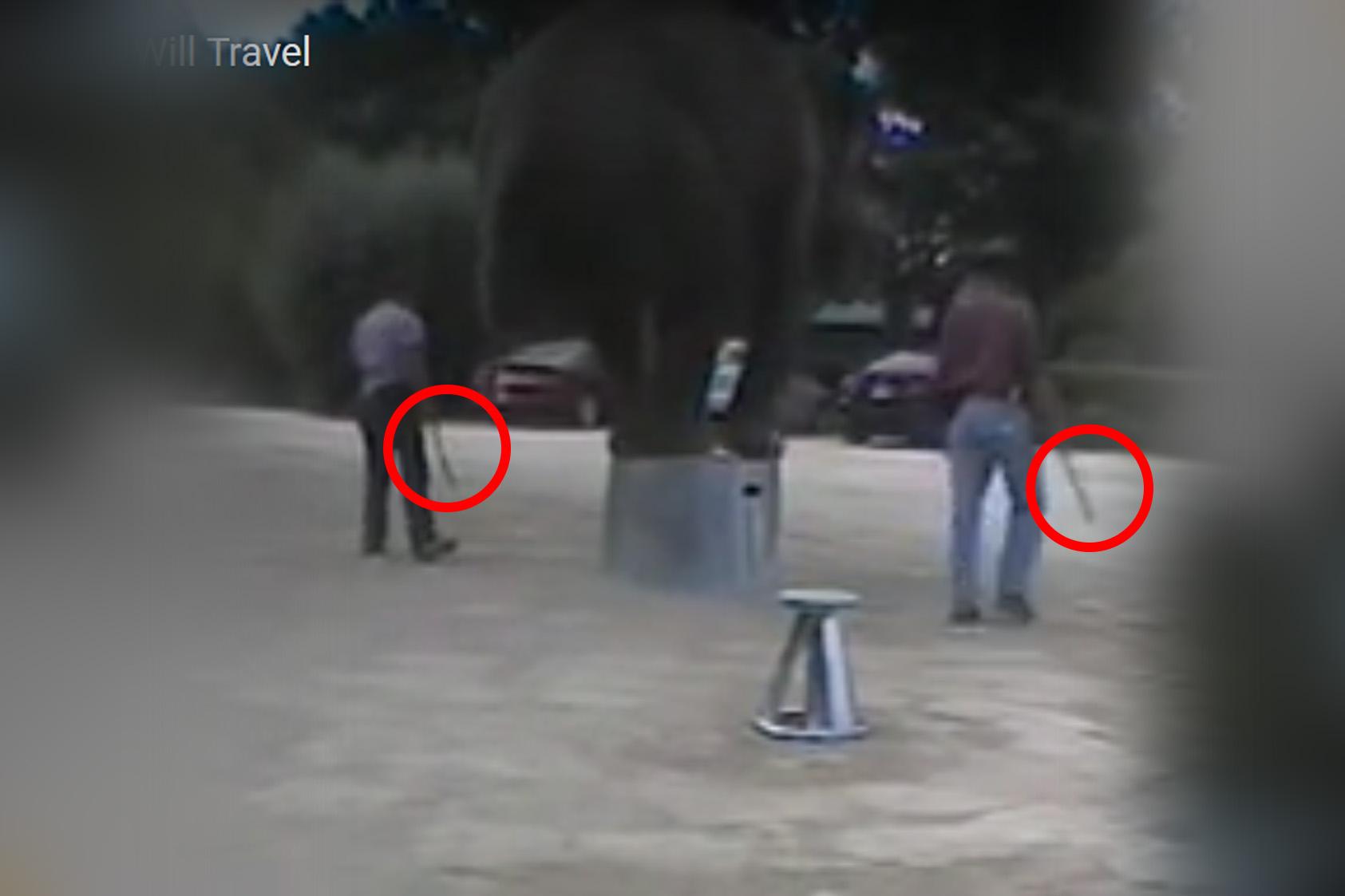 Westworld: Elefant mit Elektroschocks und Schlägen zu Tricks gezwungen