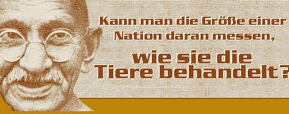 Gandhi Kann Man Die Größe Einer Nation Daran Messen Wie