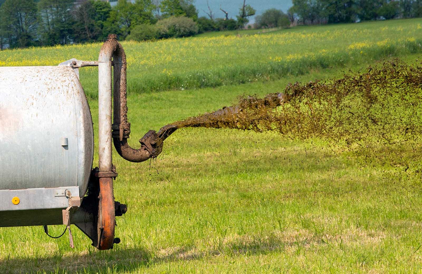 Gülle belastet Böden und Grundwasser