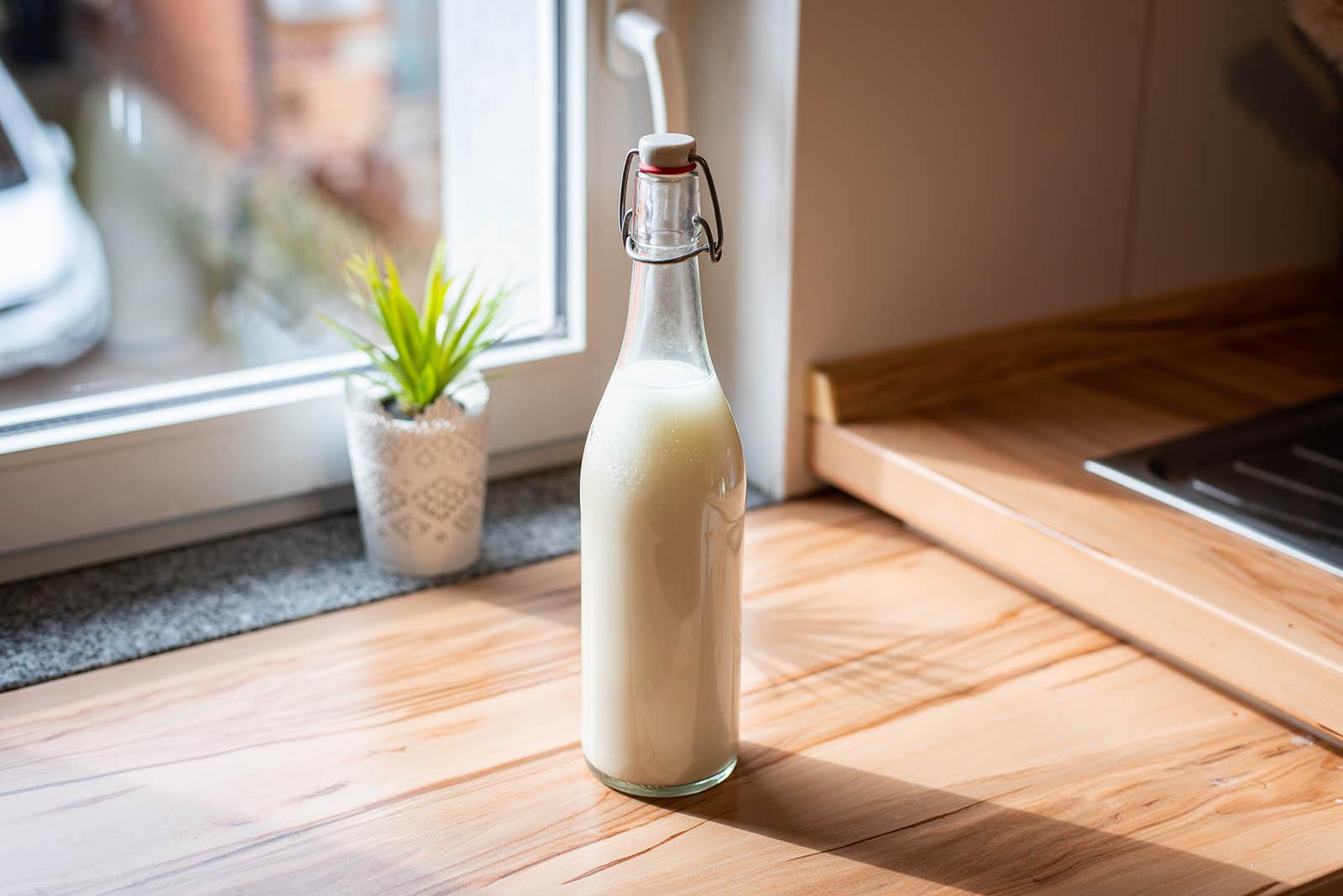 Hafermilch selber machen: So geht es einfach und schnell