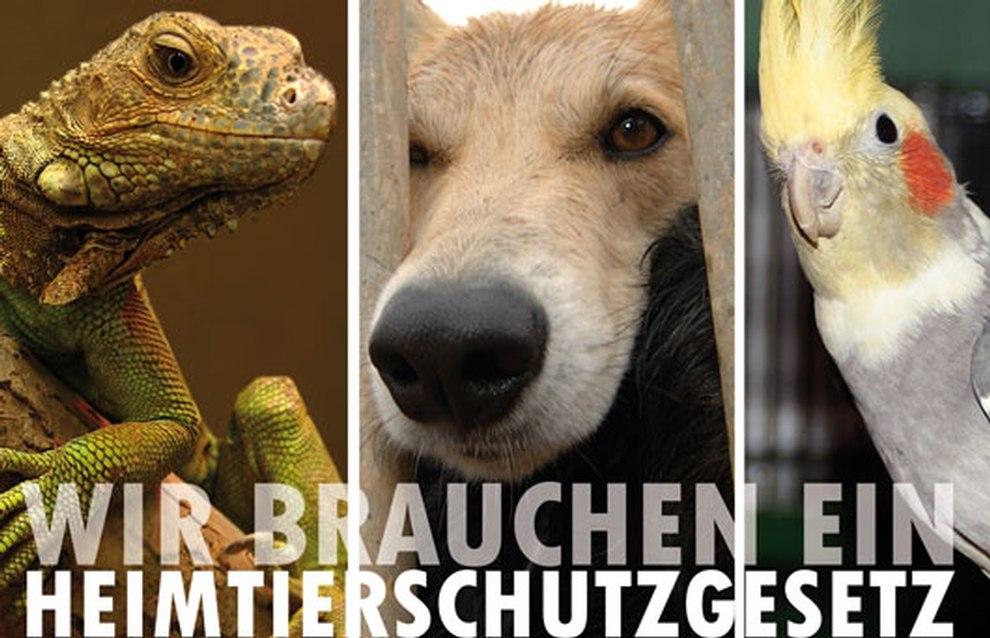 Deutschland braucht ein Heimtierschutzgesetz – jetzt unterschreiben!