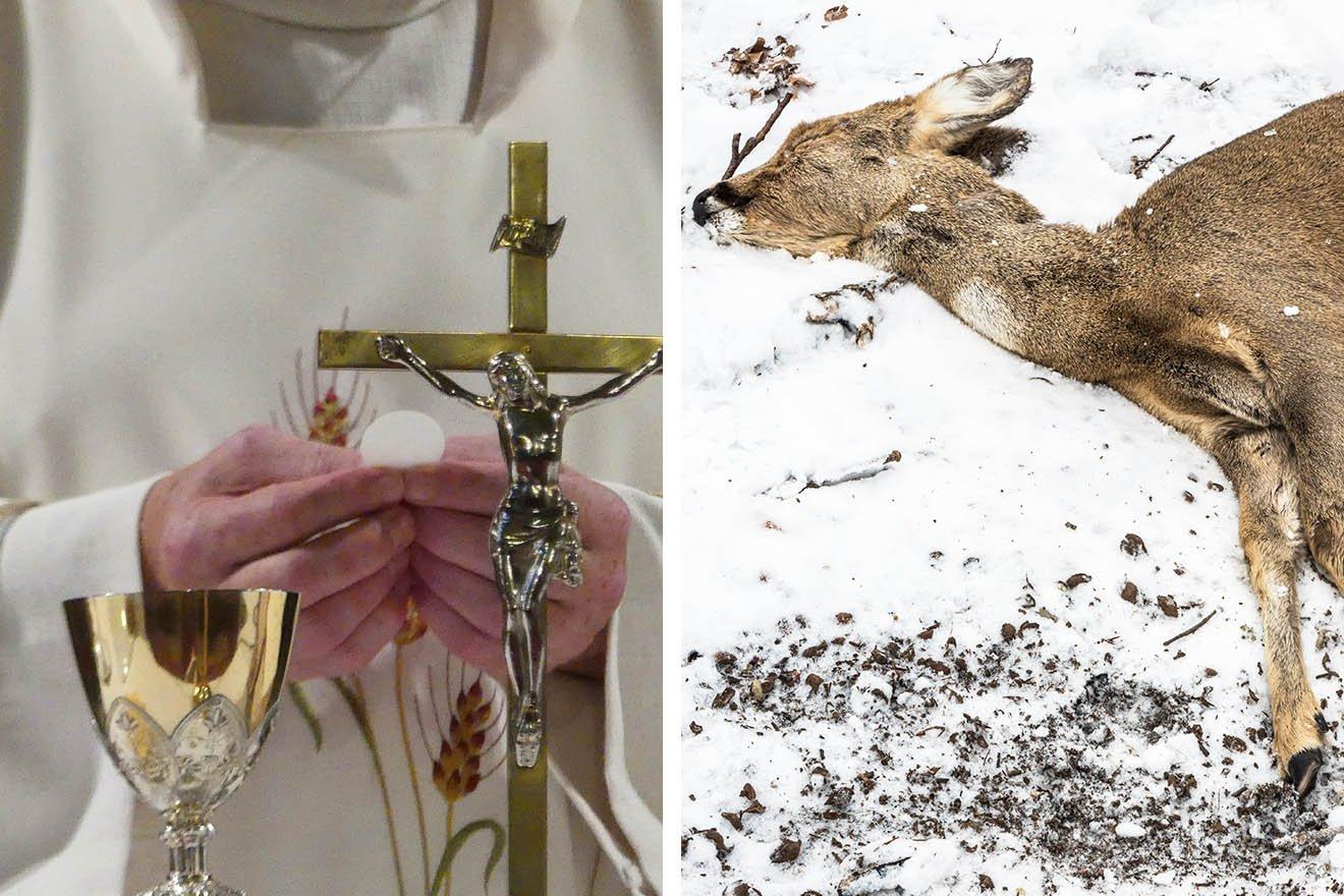 Hubertusmesse – kirchlicher Segen für Jagen und Töten von Tieren