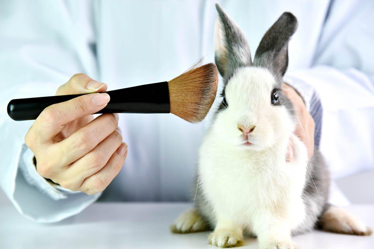 Warum noch immer Tierversuche für Kosmetik durchgeführt werden