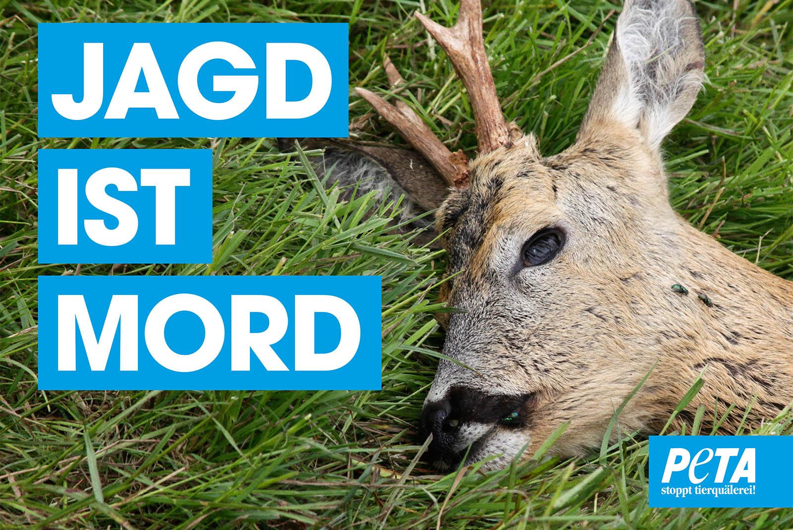 Mahnwache gegen die Jagd – jetzt kostenloses Demopaket bestellen!