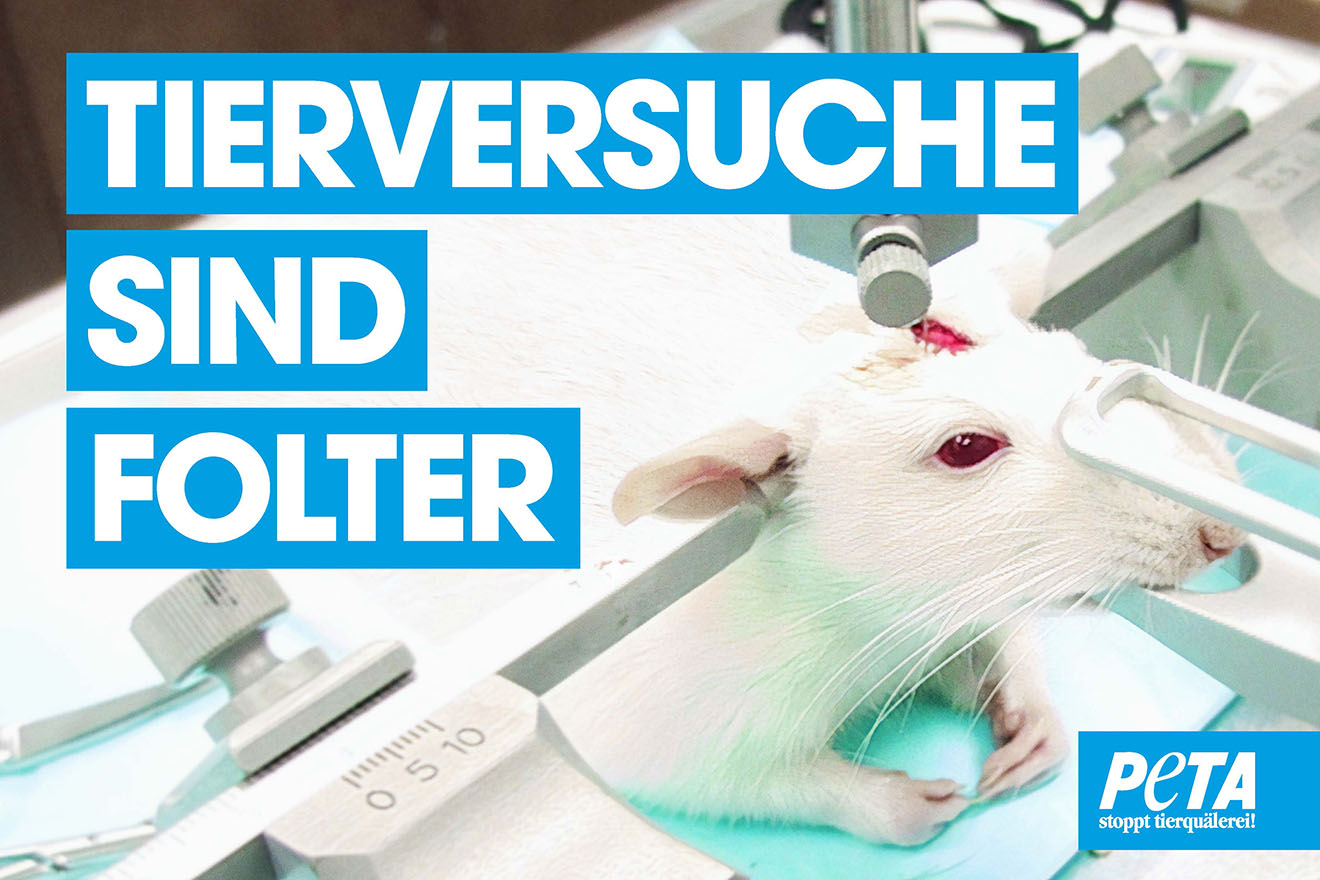Plakate gegen Tierversuche – jetzt kostenloses Demopaket bestellen!