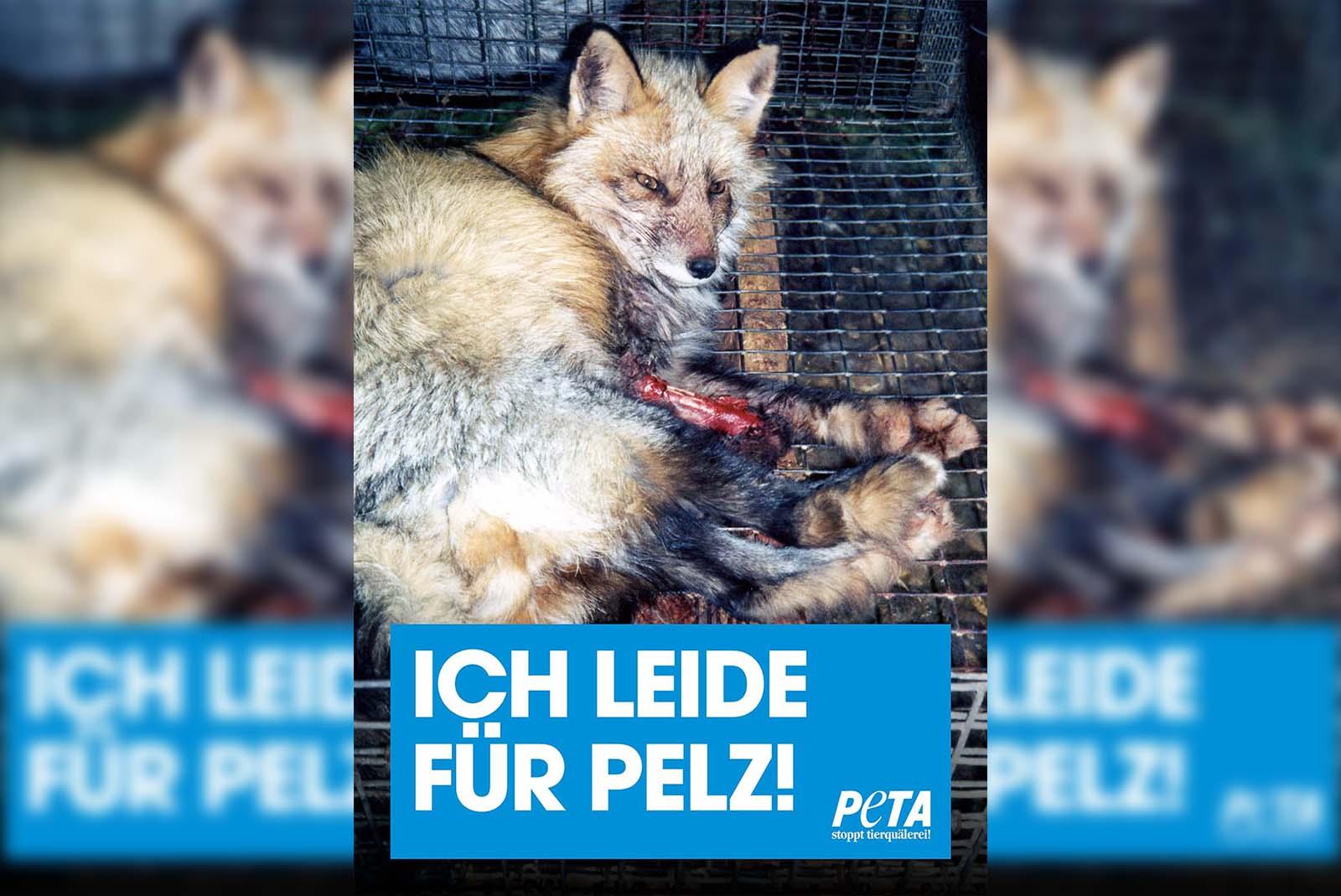 Aktion gegen Pelz: Kostenloses Demopaket jetzt bestellen!