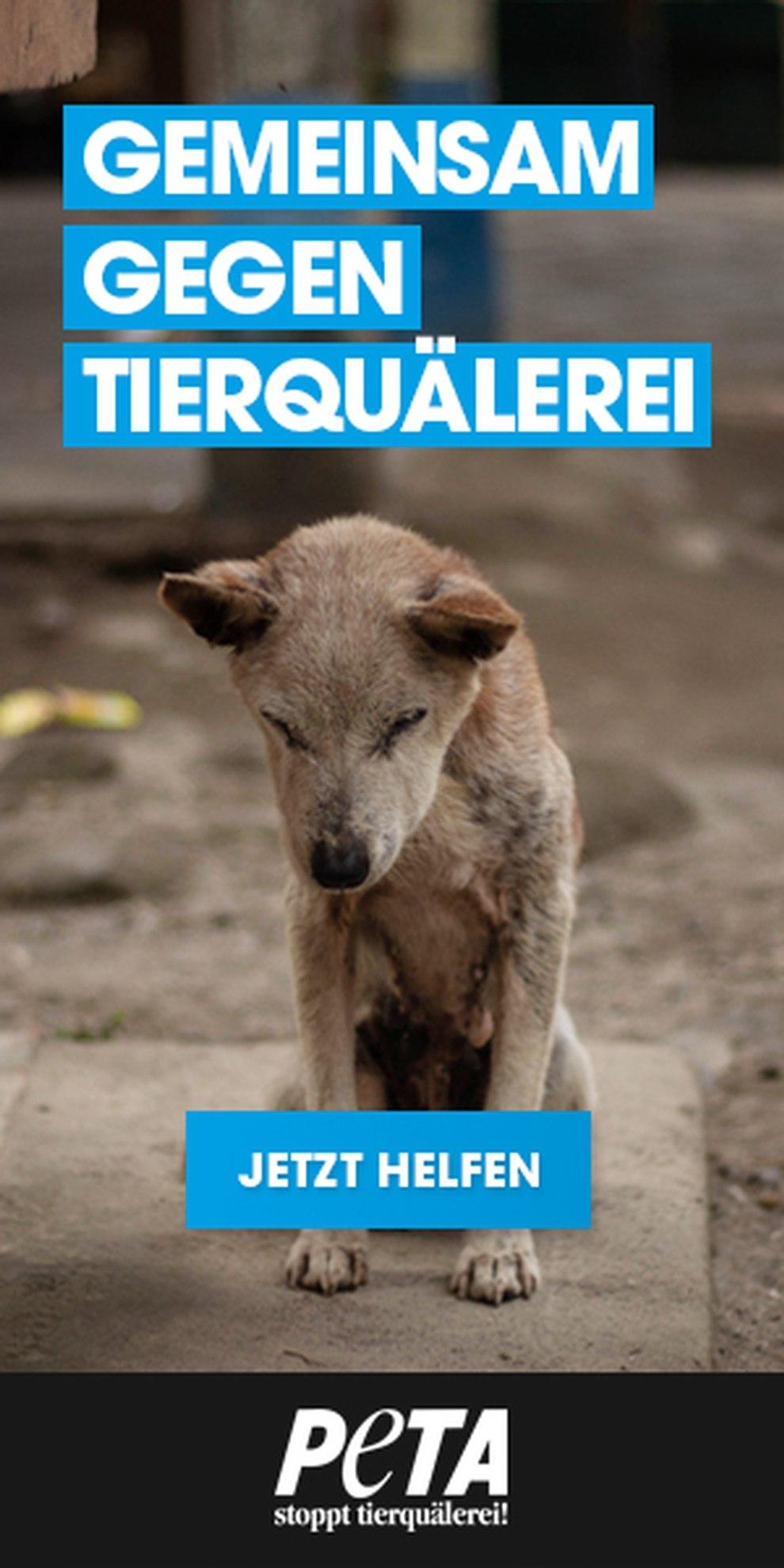 PETA Deutschland - Gemeinsam gegen Tierquälerei