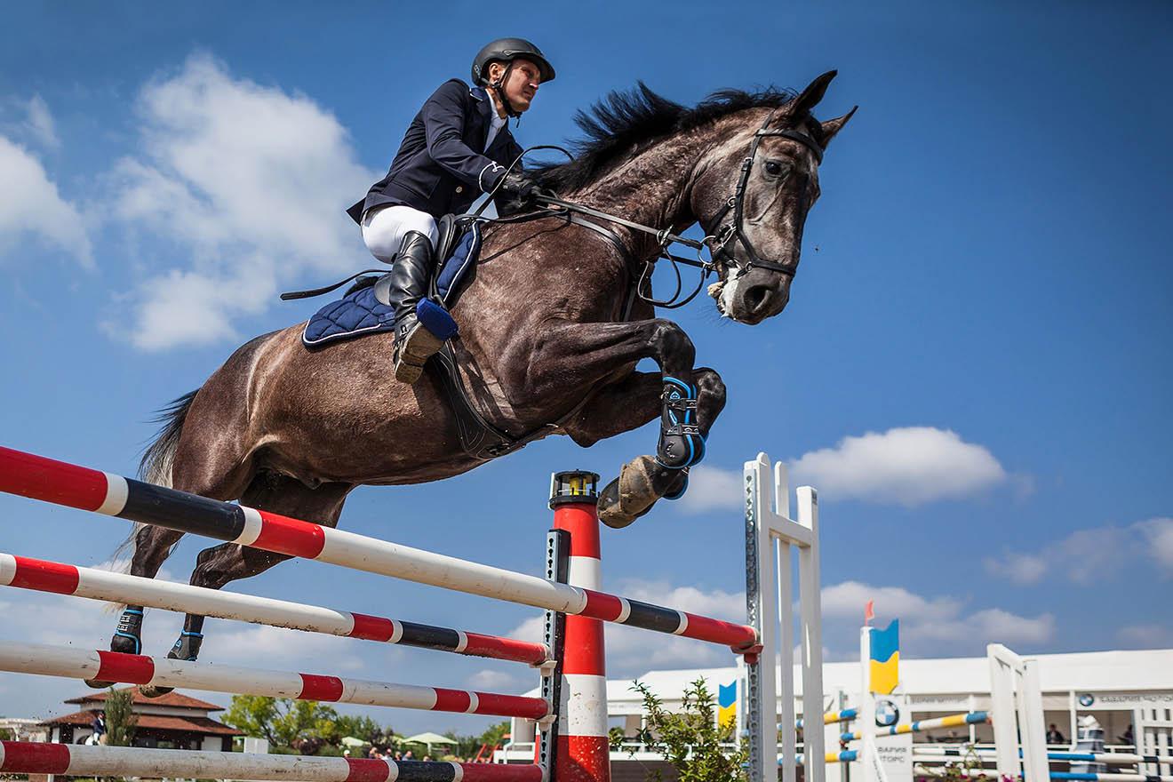 Hauptschlagader gerissen: Pferd stürzt und stirbt bei Springturnier