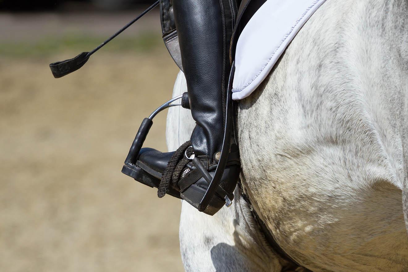 3 Folterwerkzeuge, mit denen Pferde gefügig gemacht werden