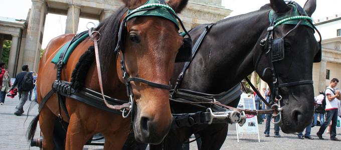 Was ist falsch an Pferdekutschen?