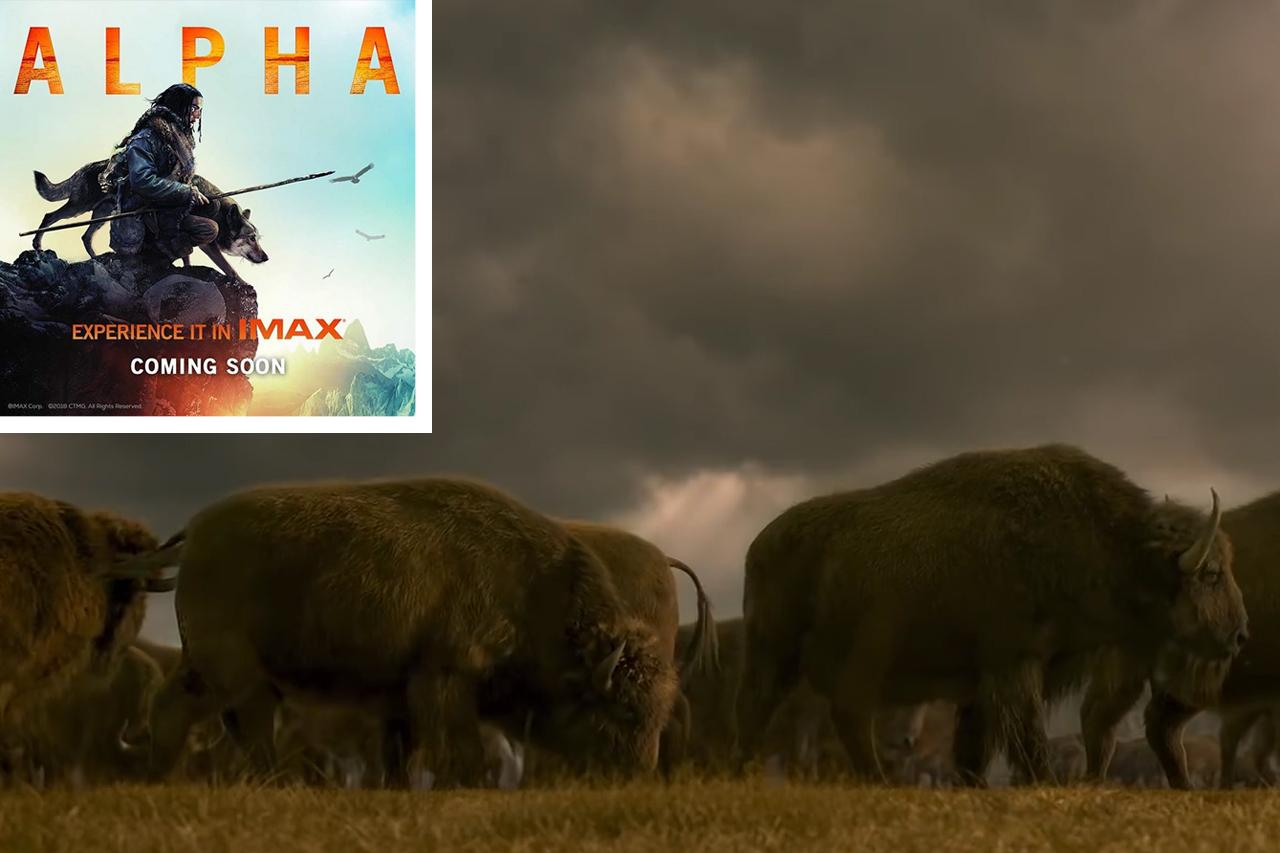 """Deshalb sollten Sie NICHT in den Kinofilm """"Alpha"""" gehen"""