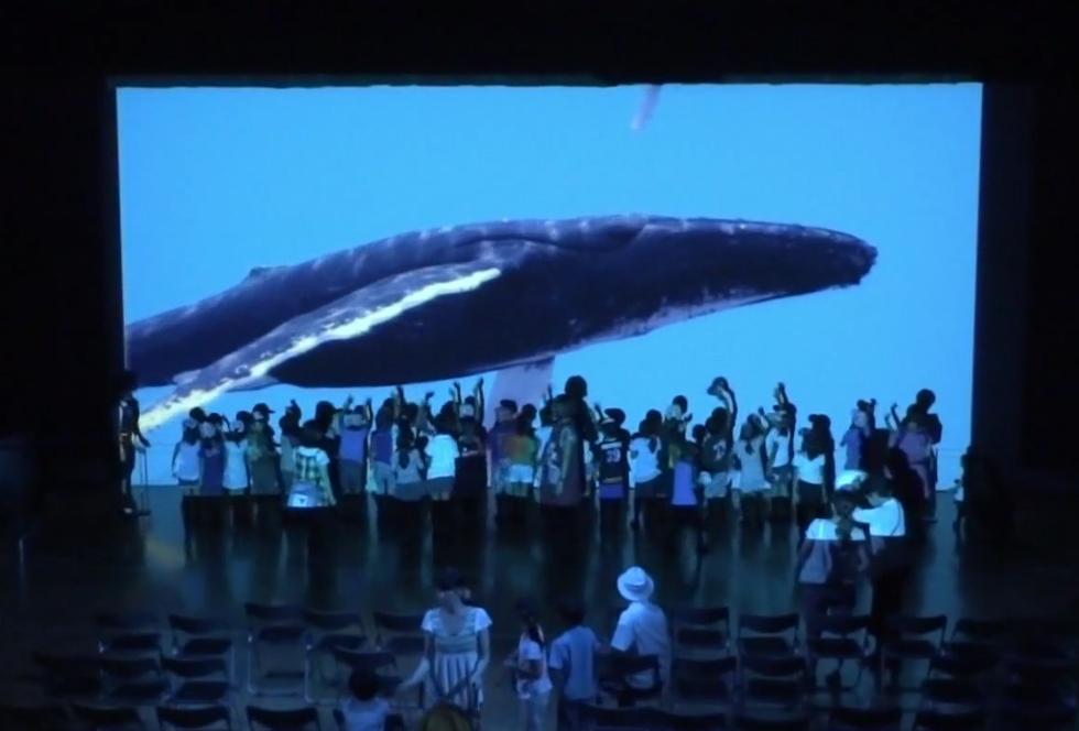 Virtuelles Aquarium: So sieht das Aquarium der Zukunft aus