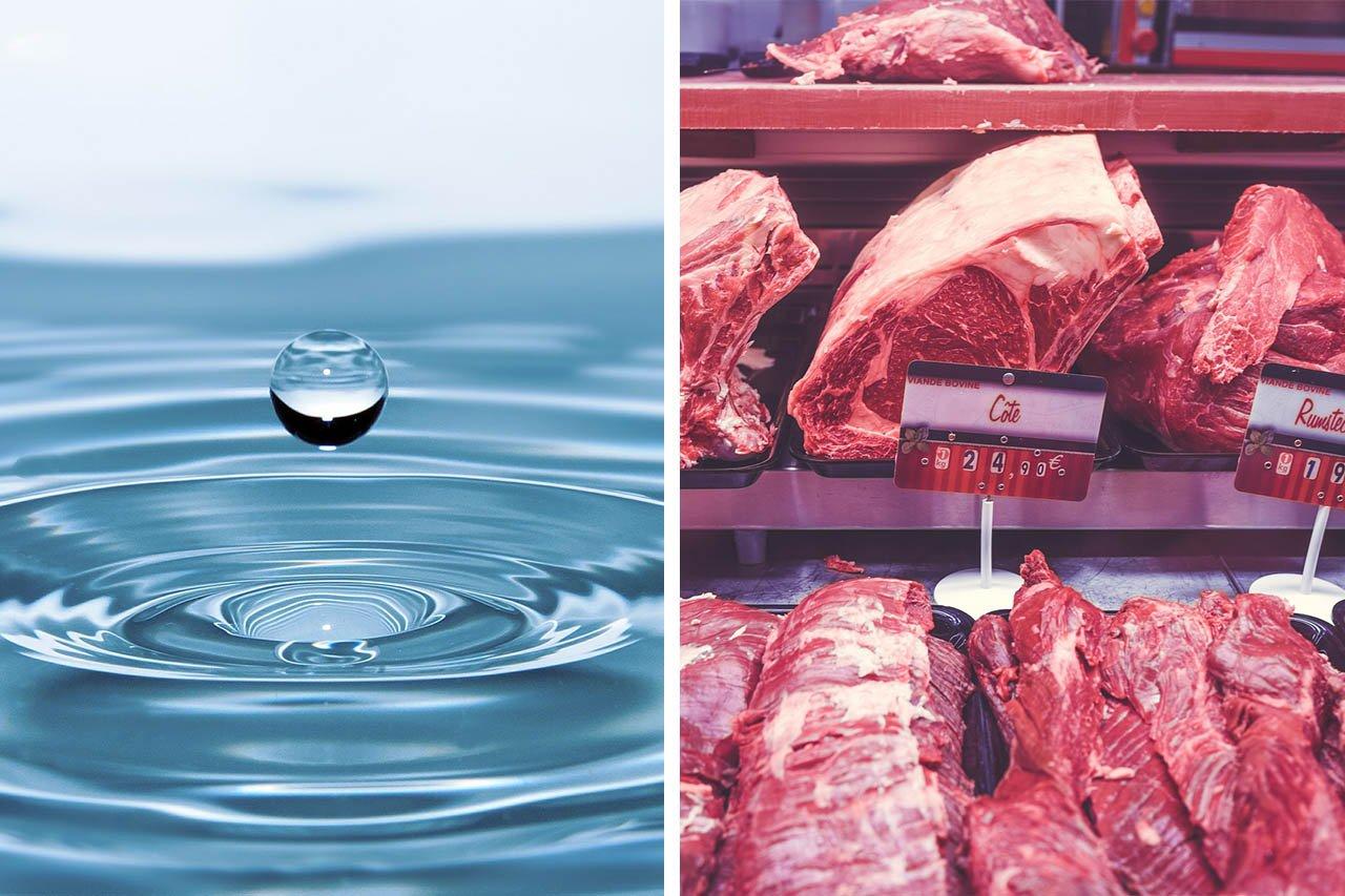 Wasserverbrauch für Fleisch: Wie hoch ist er wirklich?