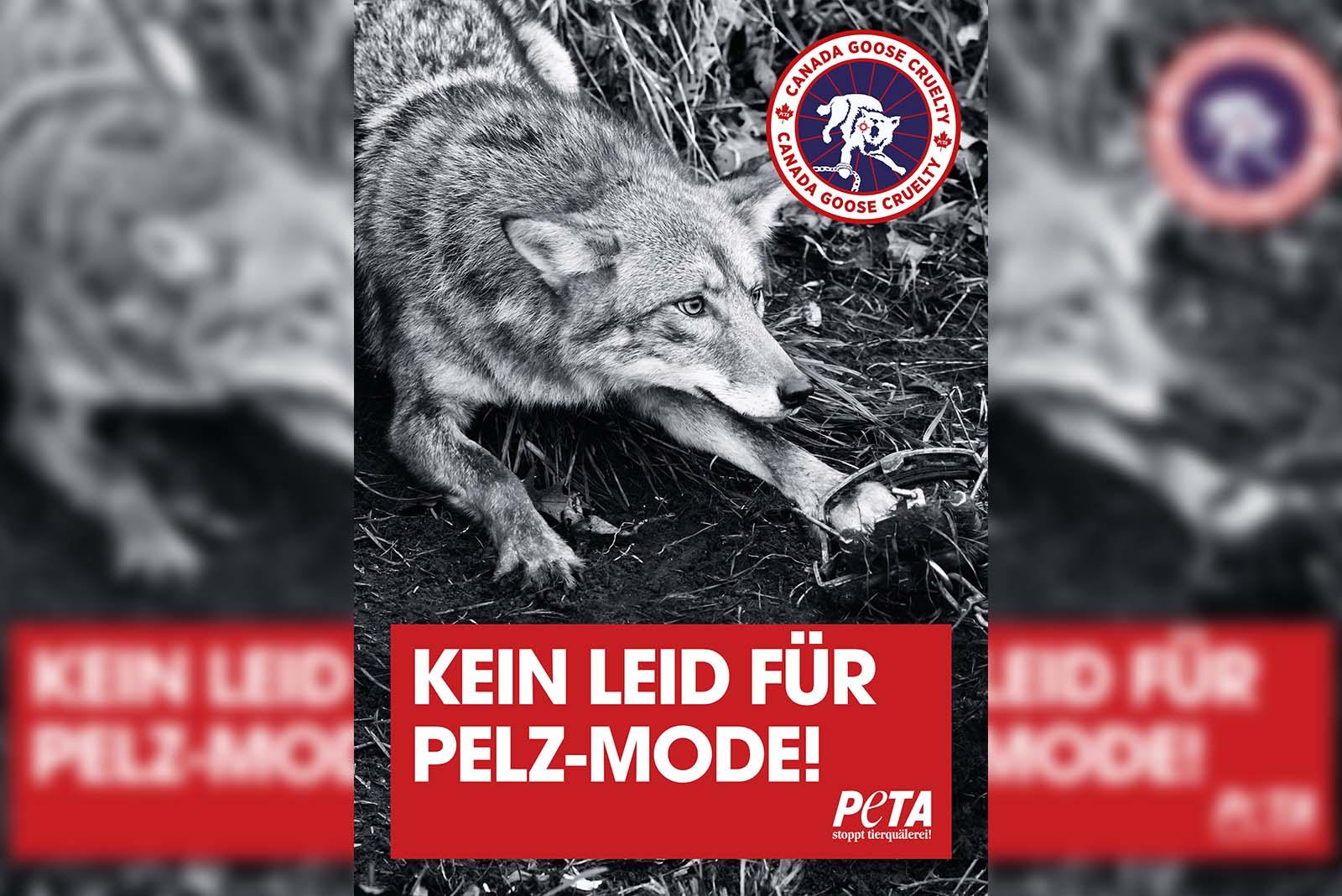 Demo Pakete Peta Deutschland Ev