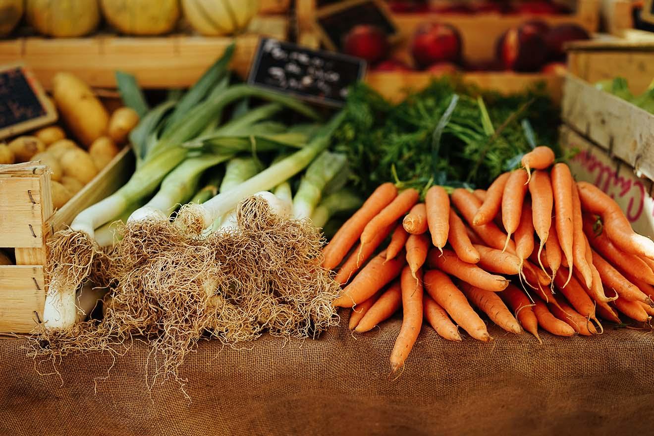 Bio-vegane Landwirtschaft: ohne Tierhaltung, Gülle und Tierleid