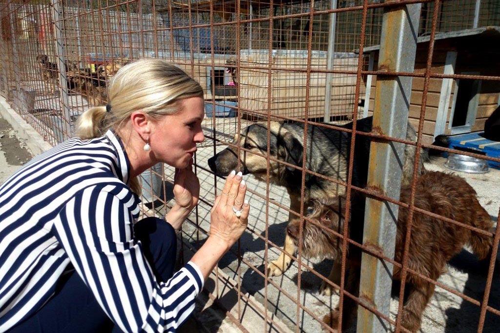 So hilft Maja Prinzessin von Hohenzollern den Tieren in Rumänien