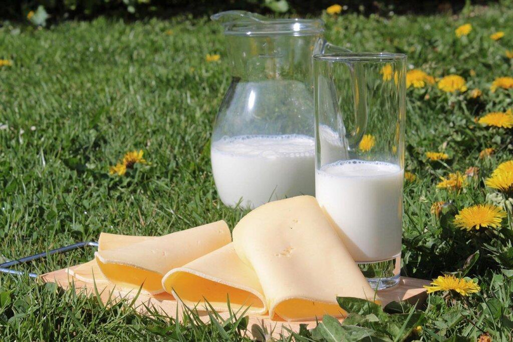 Milch und Kaese