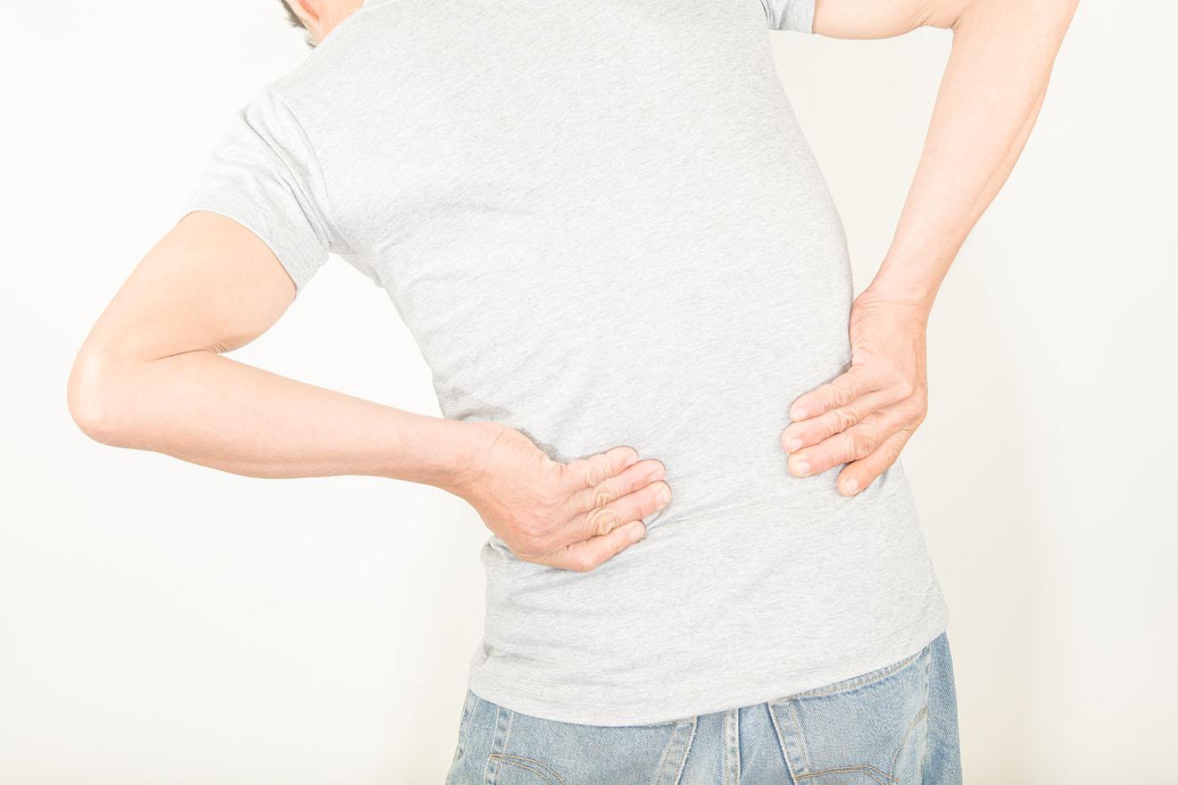 Nieren- und Harnkrankheiten