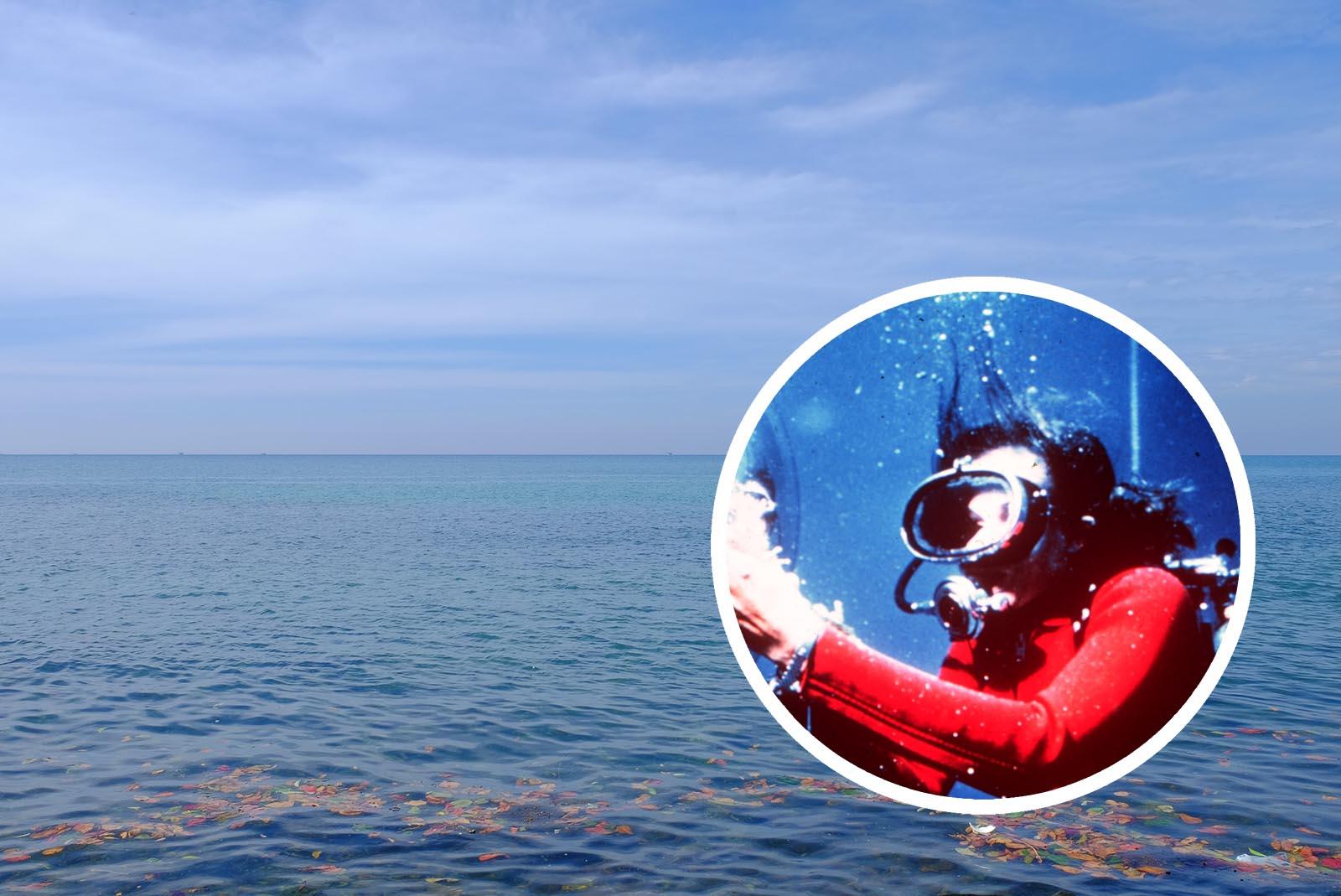 Sylvia Earle befürchtet fischlose Ozeane bis Ende des Jahrhunderts