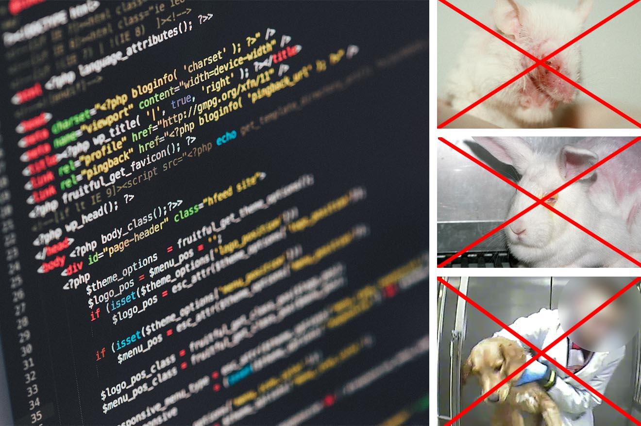 Durchbruch! Software liefert bessere Ergebnisse als Tierversuche