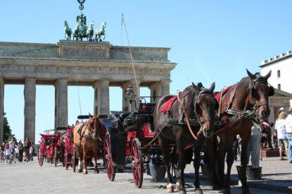 pferdekutschen vor dem brandenburger tor