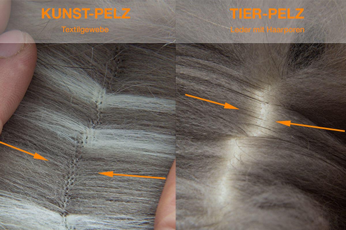 Unterschied Kunstpelz und Echtpelz Haaransatz