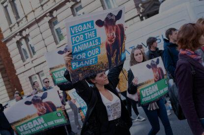 Aktiv für Tiere auf der Straße